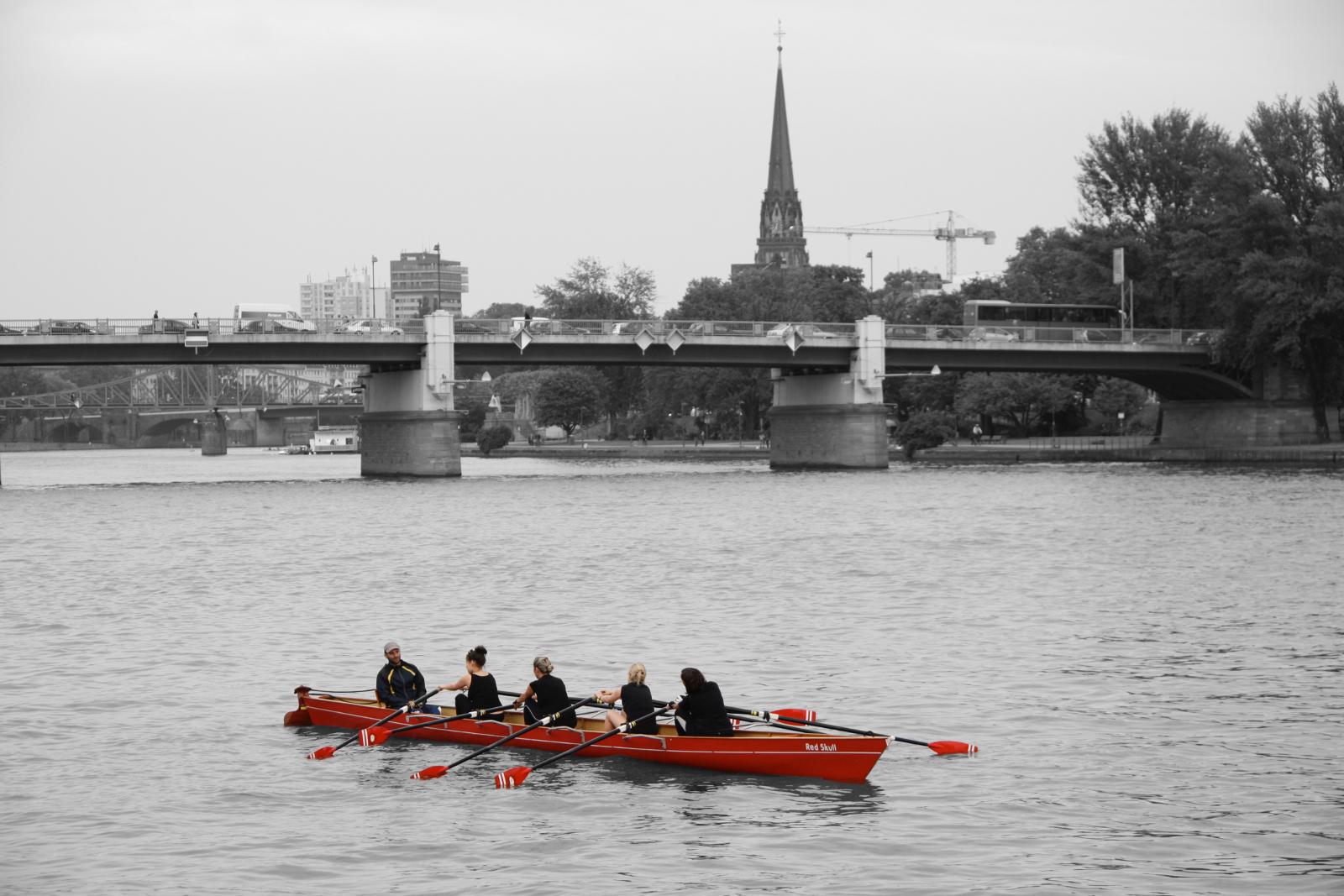 Remo sobre el río Meno, Frankfurt, Alemania